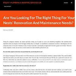 Are You Looking For The Right Thing For Your Nests' Renovation And Maintenance Needs?