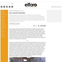 Los coyotes domados - ElFaro.net