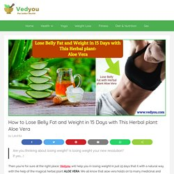 How to Lose Belly Fat in 15 Days with This Herbal plant: Aloe Vera