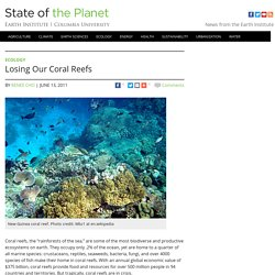 Losing Our Coral Reefs