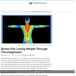 Brown Fat: Losing Weight Through Thermogenesis