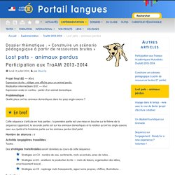 Lost pets - animaux perdus