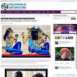 Blue Lotus : The Entheogen of Ancient Egypt