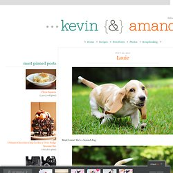 Louie | Kevin & Amanda - StumbleUpon