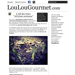 """LouLouGourmet - L'Ail des Ours """"ALLium ursinum"""""""