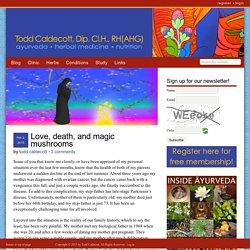 Love, death, and magic mushrooms