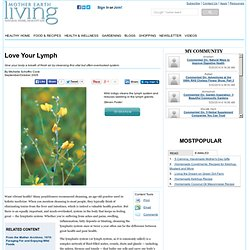 Love Your Lymph