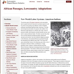 New World Labor Systems: American Indians · African Passages, Lowcountry Adaptations