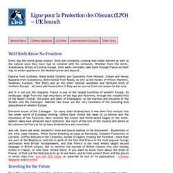LPO (UK): Home page