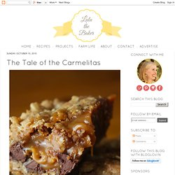 Lulu the Baker: The Tale of the Carmelitas