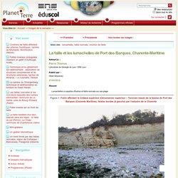 La faille et les lumachelles de Port des Barques, Charente-Maritime