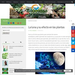 La luna y su efecto en las plantas