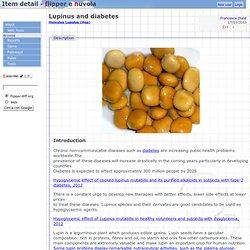 Lupinus et le diabète