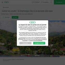 Lutter ou couler : la Martinique face à la montée des eaux ..