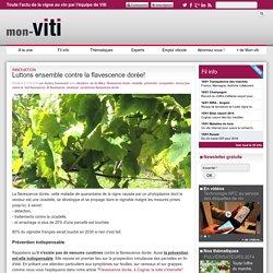MON VITI 21/10/14 Innovation - Luttons ensemble contre la flavescence dorée!