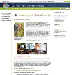 LVL Homepage