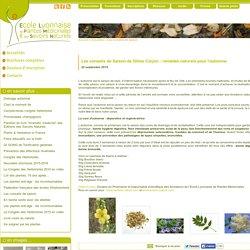 Ecole Lyonnaise de Plantes Mécidinales (ELPM) - Les conseils de Saison : remèdes naturels pour l'automne