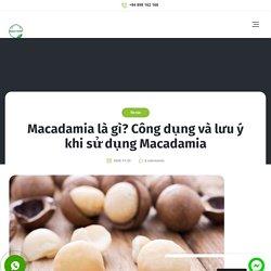 Macadamia là gì? Công dụng và lưu ý khi sử dụng Macadamia