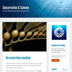 An ocean time machine – Conservation & Science