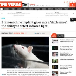 Brain-machine implant gives rats a 'sixth sense': the ability to detect infrared light