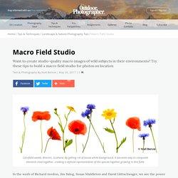 Macro Field Studio