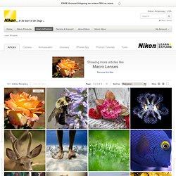 Macro Lenses from Nikon