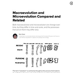Macroevolution and Microevolution Compared and Related