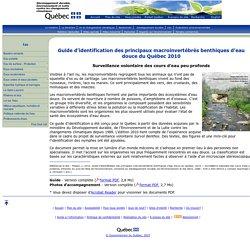 Guide d'identification des principaux macroinvertébrés benthiques d'eau douce du Québec 2010