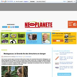 Madagascar, la Grande Ile des lémuriens en danger