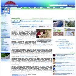 Les îles de la Madeleine seront sauvées par... des champignons