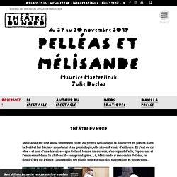 SITE du THEATRE DU NORD / autour de Pelléas et Mélisande mis en scène par Julie Duclos