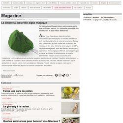 La chlorella, nouvelle algue magique
