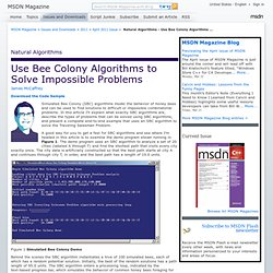 MSDN Magazine: Natural Algorithms - Use Bee Colony Algorithms to Solve Impossible Problems