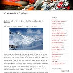 >>> Magazine escalade et alpinisme en ligne: F. Comment réduire le risque d'avalanche: la méthode MUNTER