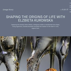 Faculty Magazine » Shaping the Origins of Life with Elzbieta Kurowska