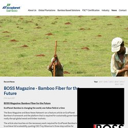 BOSS Magazine Features Bamboo Fiber for the Future