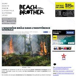 L'Indonésie brûle dans l'indifférence générale - Beachbrother MagazineBeachbrother Magazine