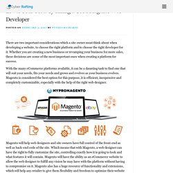 Lower Your Costs by Hiring a Good Magento Web Developer