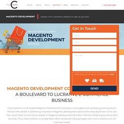 Magento Website Development