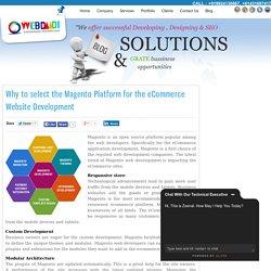 Magento Web Development eCommerce website development