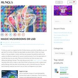 MAGIC MUSHROOMS OR LSD - Mungus Shrooms