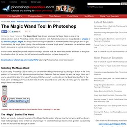 The Magic Wand Tool - Photoshop Selections