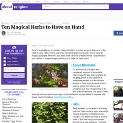 Ten Magical Herbs to Have in Your Supply Cabinet