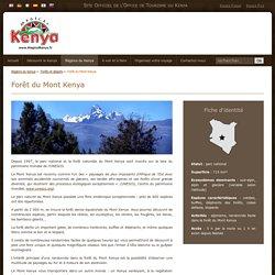 Forêt du Mont Kenya