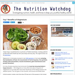 Top 7 Benefits of Magnesium - thenutritionwatchdog.com