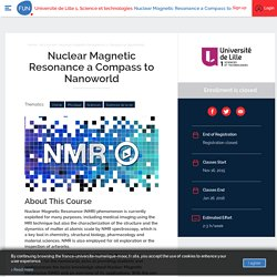 Nuclear Magnetic Resonance a Compass to Nanoworld