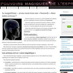 Magnétisme - Pouvoirs magiques de l'esprit