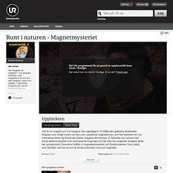 Runt i naturen - Magnetmysteriet: Upptäckten