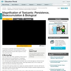 Magnification of Toxicants: Persistence, Bioaccumulation & Biological Video - Lesson and Example