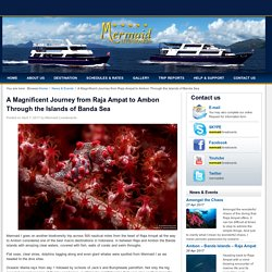 A Magnificent Journey from Raja Ampat to Ambon Through the Islands of Banda Sea -